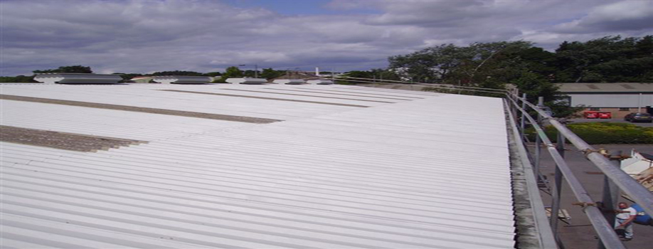 Industrial Roofing and Cladding Renovation Specialists